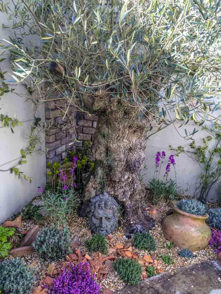 ... Small Gardens Ireland 11 ...