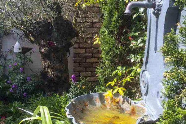 small-gardens-ireland-14