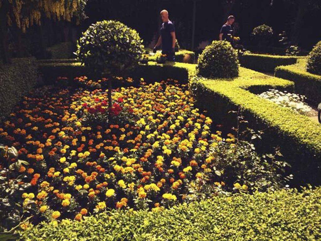 Small Gardens - Damien Keane