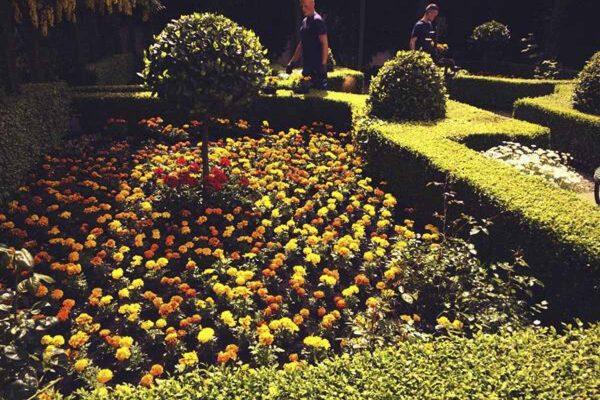 small-garden-design-1-14