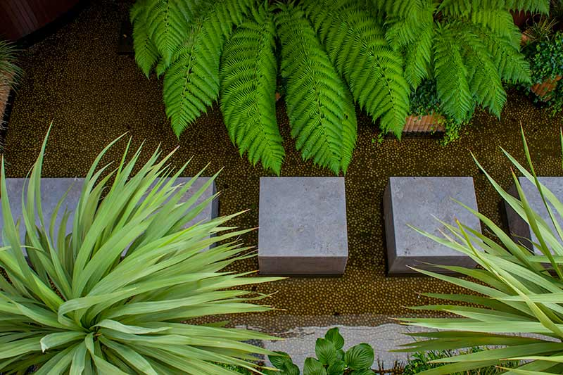 Small Water Garden Design