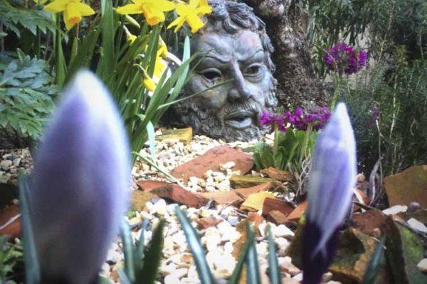 small-gardens-ireland-12