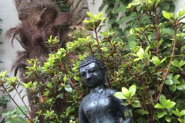 small-gardens-ireland-13